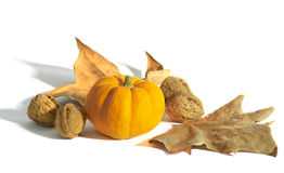 Pumpkin and nuts. Fall decoration Stock Images