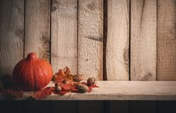 Pumpkin and nuts on wooden background. Autumn frame with an orange pumpkin surrounded by red leaves, walnuts, and hazelnuts, on a shelf against a vintage wooden stock image