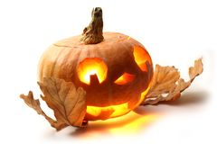 Pumpkin with oak leaves Royalty Free Stock Photos
