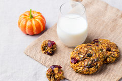 Pumpkin, oat cookies with cranberries and maple glaze with a glass of milk Copy space Royalty Free Stock Photo