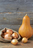 Pumpkin and onion. The still life photo of pumpkin and onion Stock Images