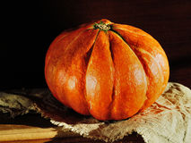 Pumpkin. Orange pumpkin on a canvas close-up Stock Photography