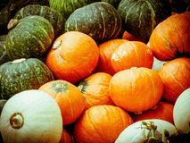 Pumpkin. Orange, Japan, Japanese , yellow, white, Japanese , background, vegetables and fruits Stock Photography