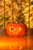 Pumpkin on the orange table Royalty Free Stock Photo