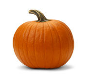 Pumpkin. Orange Pumpkin Uncut Isolated on White Background