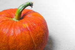 Pumpkin. Orange pumpkin on white background. Fresh and ripe Stock Images