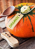 Pumpkin - organic farming Stock Photography