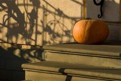 Pumpkin outdoor Stock Photos