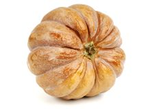 Pumpkin over white. Big pumpkin isolated over white Stock Image