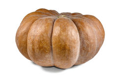 Pumpkin over white background. Stock Image
