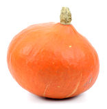 Pumpkin over white background Royalty Free Stock Images