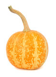 Pumpkin over white background Stock Photo