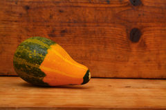 Pumpkin Royalty Free Stock Photography