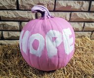 A pumpkin pai Ted pink with the word HOPE written in white sits on a straw bale Royalty Free Stock Image