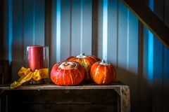 Pumpkin paradise Royalty Free Stock Photo
