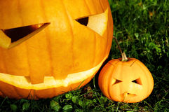 Pumpkin Parent and Child Stock Images