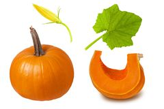 Pumpkin parts isolated. Set whole pumpkin, sliced slice, green leaf and flower cut on white background. Pumpkin parts isolated. Set whole pumpkin, sliced slice stock images