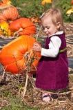 Pumpkin Patch. Little Girl Playing in a Pumpkin Patch stock photo