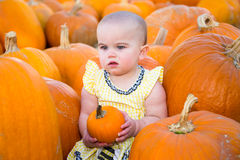 Pumpkin Patch Baby looking unimpressed Stock Photography