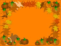 Pumpkin patch background Stock Images