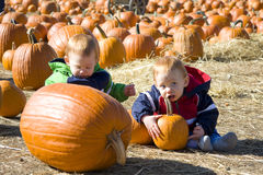 Pumpkin patch boys. Happy twin boys at a pumpkin patch having fun Royalty Free Stock Image
