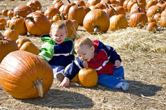 Pumpkin patch boys Royalty Free Stock Images