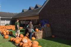 Pumpkin patch church Pearland royalty free stock photo