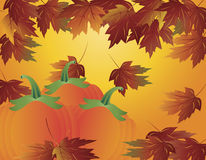 Pumpkin Patch with Fall Leaves Illustration Stock Photography
