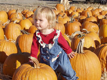 Pumpkin patch girl 3 Royalty Free Stock Photo
