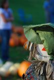 Pumpkin patch scarecrow 2 Stock Image