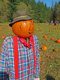 Pumpkin Patch & Scarecrow Stock Photography