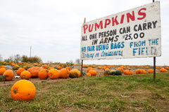 Pumpkin Patch Sign Stock Photo