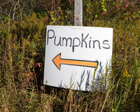 Pumpkin Patch Sign with Orange Arrow Royalty Free Stock Photos