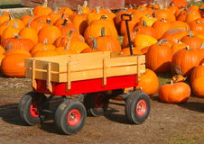 Pumpkin patch wagon Stock Image