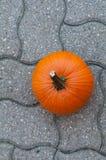 Pumpkin on a patio Stock Photos