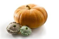 Pumpkin and patisson Stock Photo