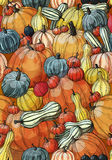 Pumpkin pattern. Big and small multikolor pumpkins Royalty Free Stock Photos
