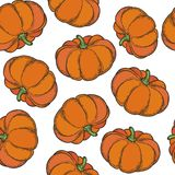 Pumpkin pattern. Vegetarian food. Hand drawn pumpkin seamless pattern. Vector vintage vegetables illustration.  For wrapping paper, street festival, farmers Royalty Free Stock Images