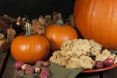 Pumpkin Pecan Scones royalty free stock images
