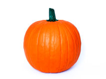 Pumpkin Perfect on White Background Royalty Free Stock Photo