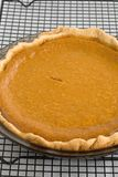 Pumpkin Pie. Fresh Baked Pumpkin Pie on a cooling rack Royalty Free Stock Photography