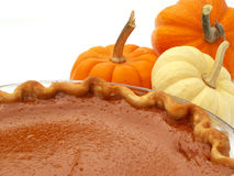 Pumpkin pie. And mini pumpkins stock images