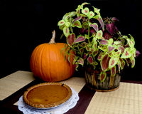 Pumpkin Pie. A fresh pumpkin pie on display alongside a whole pumpkin and red and green foliage stock photography