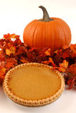 Pumpkin pie Stock Images