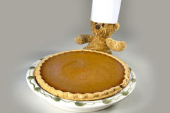 Pumpkin Pie with Chef Bear Stock Photo