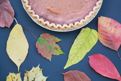 Pumpkin Pie with Fall leaves with black back ground Stock Photo