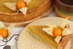 Pumpkin Pie. Fresh homemade pumpkin pie on a plate. Shallow DOF stock images