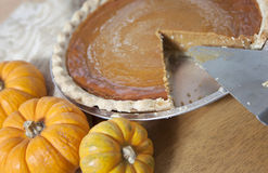 Pumpkin Pie Stock Image