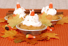 Pumpkin Pie Mini Trio Royalty Free Stock Photos