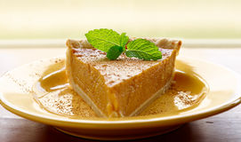 Pumpkin pie with mint garnish and copyspace Royalty Free Stock Images